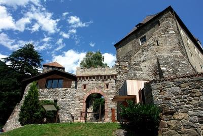 Schloss Tirol #2