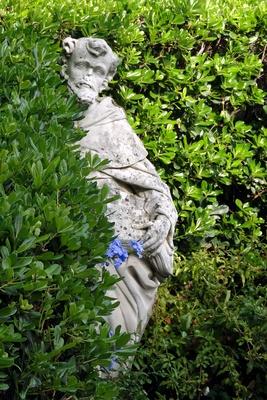 Der Belesene im Garten