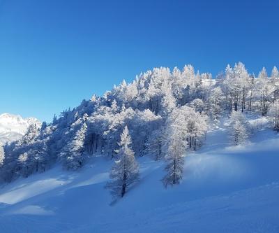 Winterlandschaft Reif Sonne