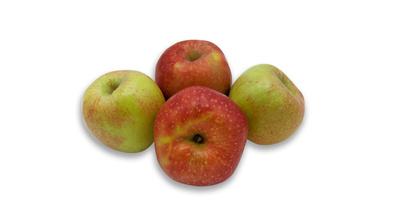 4 frische Äpfel