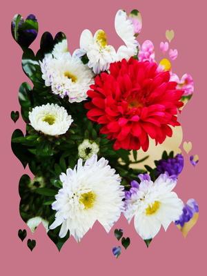 Bunte Blumenkarte