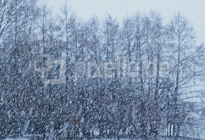schneesturm intermezzo