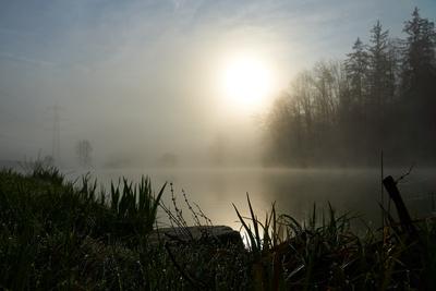 Nebel, Wasser, Sonne