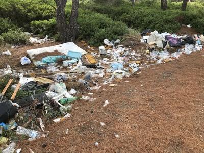 Wilde Mülldeponie im Wald