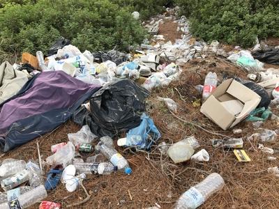 Willde Müllkippe im Wald