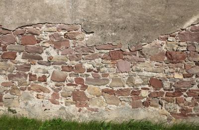 auf der Mauer auf der Lauer