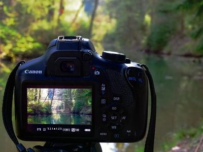 Kamera im Wald