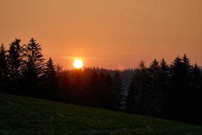 Sonnenaufgang mit Wald und Wiese
