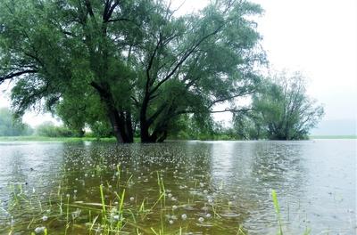 Hochwasser und immer weiter Regen