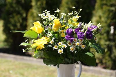 Ein schöner Blumenstrauß