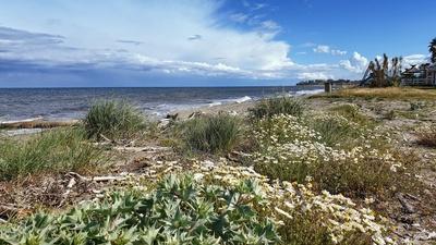 Am Strand von Folelli