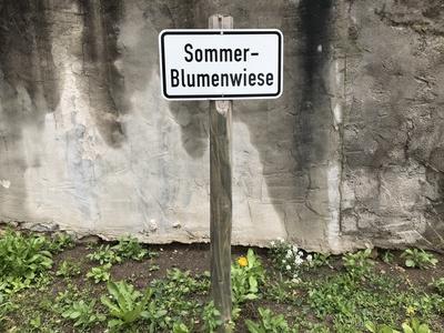 Schild: Sommerblumenwiese