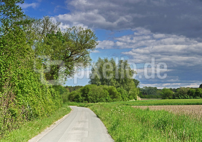 Parklandschaft Münsterland