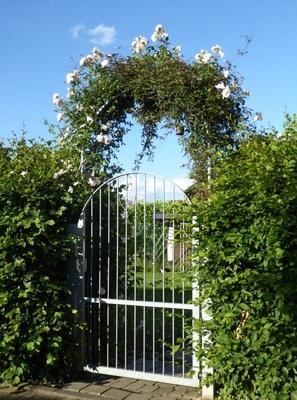 Rosenbogen zum Garten