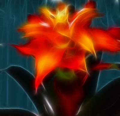 eine blüte mit fraktalfilter