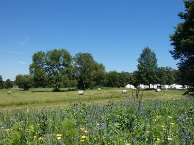 Zeltlager auf Sommerwiese