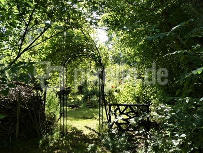 Das Tor zu grünen Lunge...