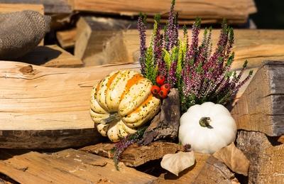 Herbstzeit.....Kürbiszeit