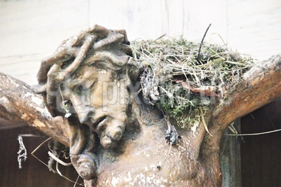 Er trägt die ganze Schöpfung - Jesus mit Nest auf Schulter