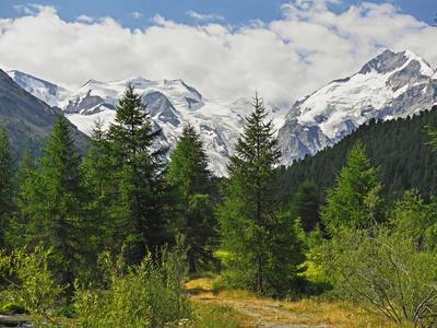 Durchs Tal zum Gletscher