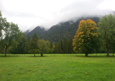 Es wird Herbst in Oberbayern