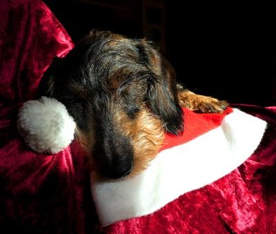 Warten auf Weihnachten