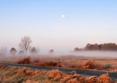 Nebelstreif im roten Morgenlicht