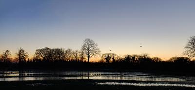 Überschwemmte Weide im Abendrot