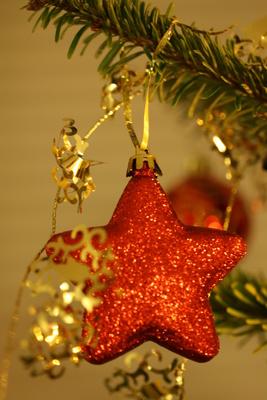 Ein Weihnachtsstern