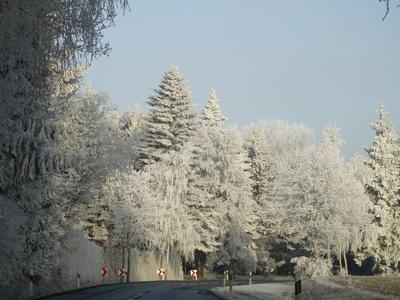 licht und schatten des winters