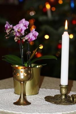 Kerzenschein und Orchidee