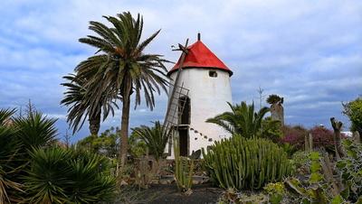 Alte Mühle auf Lanzarote
