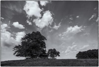Berner Landschaft sw