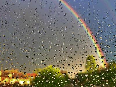 Regentropfen im April