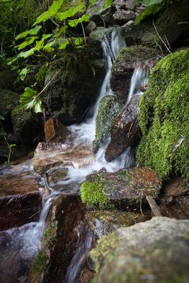 Burgbach-Wasserfall-5