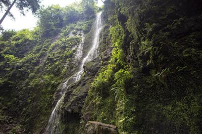 Burgbach-Wasserfall-26-2