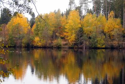 Herbstidylle am Schlüchtsee
