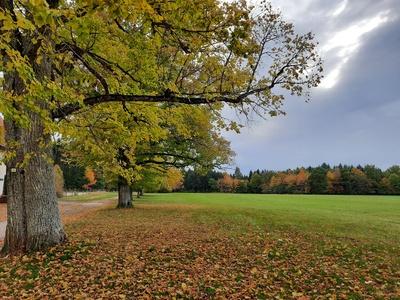 Herbsttag im Schwarzwald