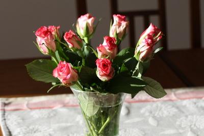 Rosa Rosen in der Vase