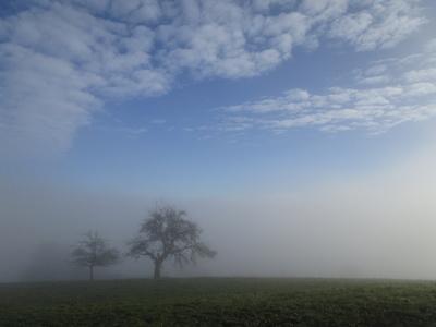 Nebelobergrenze