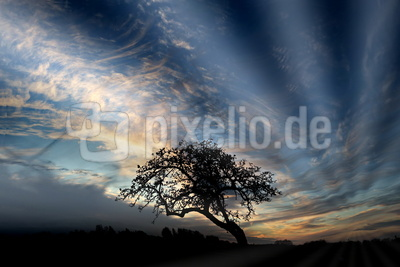 bewegter himmel 2