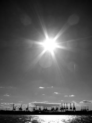 Hamburger Hafen: Kräne im Gegenlicht Foto: Alexander Hauk