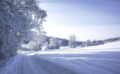Wintertraum mit Neuschnee