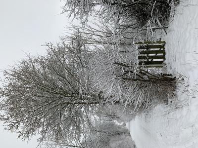 Schnee auf dem Spazierweg, mit Gartentürchen