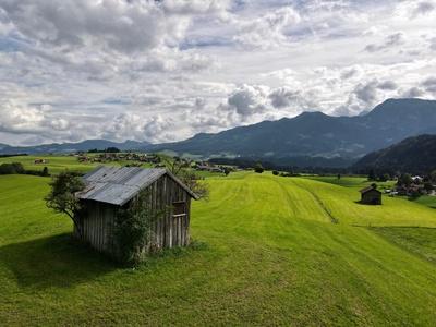 Bergwiesen im Allgäu