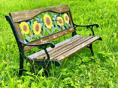 Sonnenblumenbank